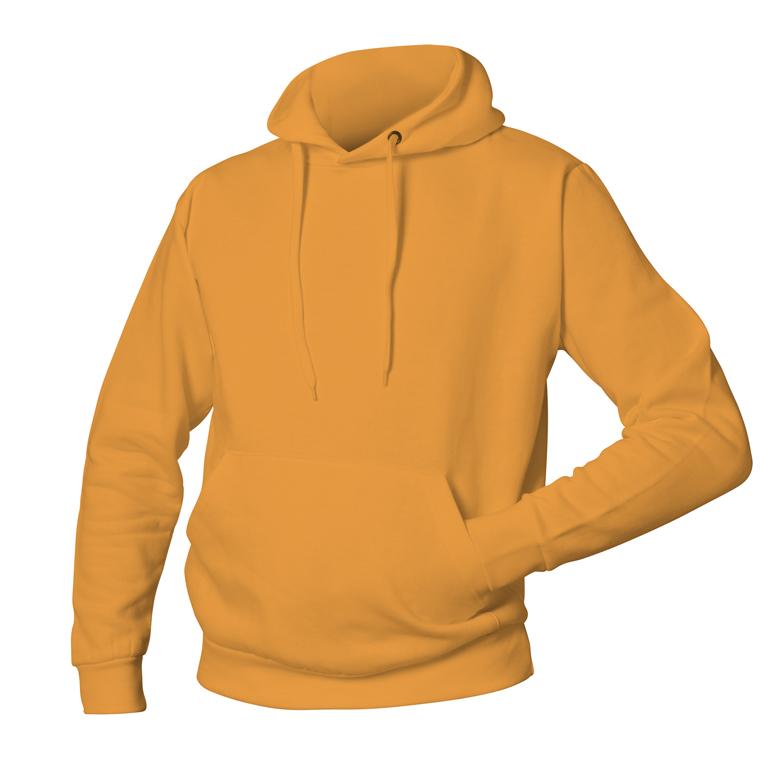 Logostar 46 Orange